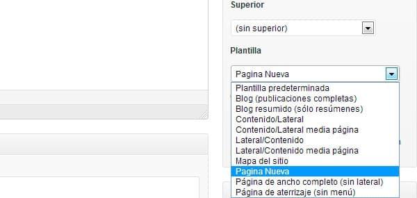 plantilla pagina nueva en wordpress